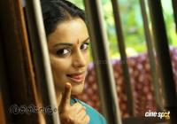 Rathinirvedam movie photos (12)