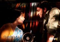 Rathinirvedam movie photos (5)