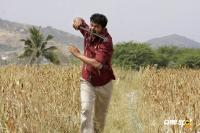Vijay Photos (3)