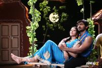Speed Telugu New Movie Photos, Stills